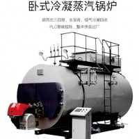 環保鍋爐/蒸汽鍋爐